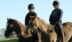 Alice Reins on Horse - Starting my business