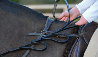 About Alice Reins - Image of Alice Reins on Horse