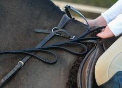 Alice Reins Help A 11 Year Old Boy Who Has One Hand!