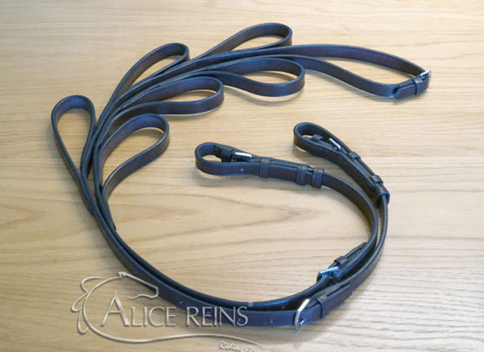 Alice Reins Ideal For Major Stroke Victims